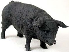 "Amazon.com: Custom & Unique {5"" Inch} 1 Single, Home & Garden ""Standing"" Figurine Decoration Made of Resin w/ Realistic North American Pig Style {Black Color}: Home & Kitchen"