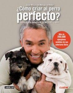 Cómo criar al perro perfecto