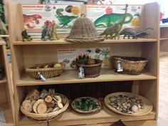 Small world dinosaur area- enhanced provision. Includes dinosaurs, fact sheets, dome of awe and wonder, logs, stones, pebbles, leaves and herbs, fir cones, potpourri and aquarium wood.