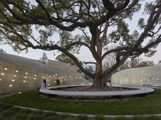 Gallery of Kaplan Family Pavilion at City of Hope / Belzberg Architects - 1