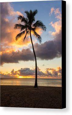 Waimea Beach Sunset 2 - Oahu Hawaii by Brian Harig