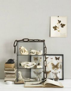 The Rustic Modernist: The art of the vignette.