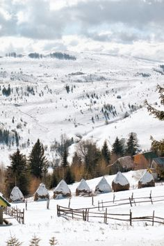 Transylvania in winter. I need to visit Romania. Albania, Macedonia, Places To Travel, Places To Visit, Travel Destinations, Winter Szenen, Winter Travel, Visit Romania, Romania Travel