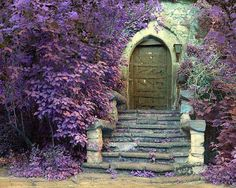 Stone doorway surrounded by purple