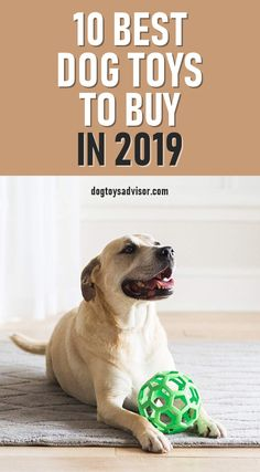 10 Best Dog Toys To Buy in 2019 Here's our list of the Top 10 Best Dog Toys To Buy in It covers all types of toys, from chew toys to balls, tough bones and interactive puzzles. Check it out! Smart Dog Toys, Tough Dog Toys, Cute Dog Toys, Diy Dog Toys, Best Dog Toys, Pet Toys, Best Dogs, Cute Dogs, Stimulating Dog Toys