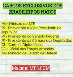 MP3.COM - MACETE para cargos exclusivo de brasileiros natos