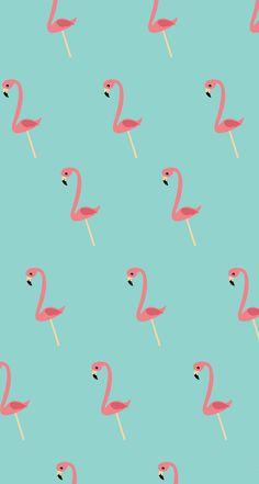 Flamingo Pattern ★ Find more epic #iPhone + #Android #Wallpapers and #Backgrounds at @prettywallpaper