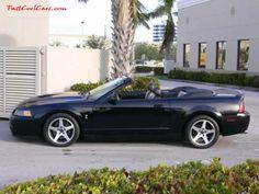 Jenkins & Wynne Ford-Lincoln-Mercury-Honda 328 N. College St 37040 931-647-3353