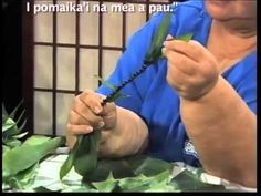 Making a Ti Leaf Lei. to soften freeze, she suggests -microwave, place in sun ; or parboil