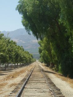Fillmore & Western Railway - Weekend Scenic Excursions