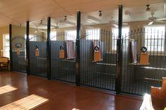 Inside Dog Kennels | Indoor Dog Kennels