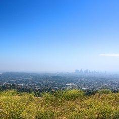 Griffith park hikes