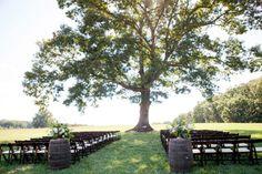 outdoor summer wedding under a tree in a north carolina field | Leigh Pearce Events | Sunflower Inspired Summerfield Farm Wedding {Rachel   Justin} | Greensboro NC Event Planner