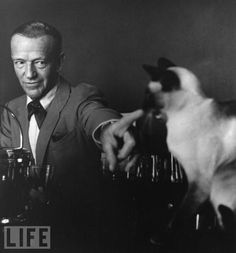 Fred Astaire and the Siamese given to him by Kim Novak, he named it Caryle after the character she played in their movie The Notorious Landlady (1962).