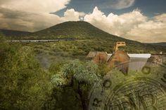 Be treated to beautiful scenery aboard a Rovos Rail journey.