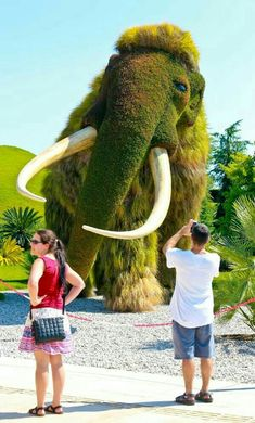 Expo's favorite plant sculptures - All About Atlanta Botanical Garden, Botanical Gardens, Succulents Garden, Planting Flowers, Amazing Gardens, Beautiful Gardens, Grass Flower, Topiary Garden, Growing Gardens