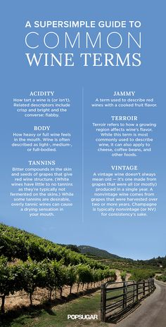 """Hearing words like """"tannins"""" and """"oxidation"""" may make you feel like you're back in chemistry class, but they're oh so important to the wines we enjoy on the regular. Don't let them intimidate you, though — getting familiar with wine's most common terms can be as easy as pouring a glass of red at the end of a long day. Brush up on these words, and you'll be moving past """"sweet"""" and """"dry"""" in no time so that when you go wine tasting again, you'll be the pro with all the insider knowledge."""