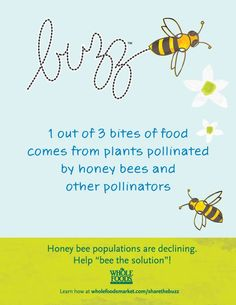 1 out of 3 bites of food comes from plants pollinated by hones bees & other pollinators.  Perhaps the best start would be for whole foods not just to label GMO foods but to ban them and back legistation and lobby for honey bee protection via bills that make GMO's and Monsanto products illegal.