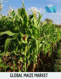 Global Maize Market