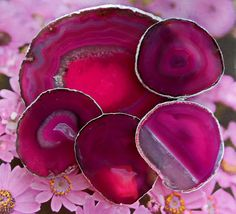 Large Hot Pink Agate Slice Cheese Tray Platter And 4 Wine Glass Coasters Silver Leaf Edge
