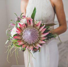 gorgeous king protea bouquet with trailing veronica Tropical Wedding Bouquets, Protea Wedding, Wedding Table Flowers, Fall Wedding Bouquets, Bride Bouquets, Floral Wedding, Floral Bouquets, Protea Bouquet, Farm Wedding