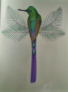 #Daisyfletcher #Birdtopia Peacock, Daisy, Bird, Animals, Peacock Bird, Animais, Animales, Animaux, Daisy Flowers