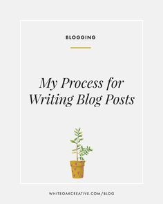 Process for writing and publicizing blog posts, blog guide, blog tutorial, how to grow your blog | blogging tips