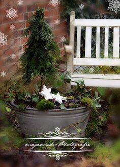 Christmas deco zinc tray with mini fir - Christmas Inspiration - weihnachts dekoration Christmas Porch, Noel Christmas, Country Christmas, Outdoor Christmas, Winter Christmas, Vintage Christmas, Christmas Crafts, Deco Nature, Navidad Diy