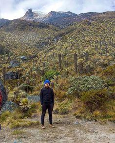"""Senderismo Colombia 🇨🇴 en Instagram: """"📍 🏔Campamento 4.200 msnm. • 📌🌋🏔Parque nacional natural los nevados (PNNLN), Ibagué, Tolima. Un descanso después de 7 horas de ascenso🚶🏻♂…"""" Mountains, Natural, Instagram, Travel, Colombia, Camping, National Parks, Trekking, Viajes"""