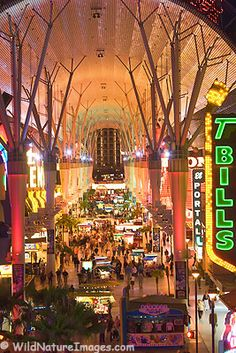 Fremont Street in downtown Las Vegas. one of the places we visited on our anniversary trip to Vegas Nebraska, Oklahoma, Kansas, Luxor, Wyoming, Puerto Rico, Restaurant Hotel, Las Vegas Vacation, Girls Vacation