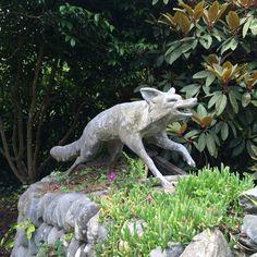 Fox Statue Entrance Of Glendurgan Garden.