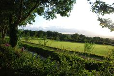 Hawkchurch is set in rolling countryside Campsite, Countryside, Vineyard, England, Park, Devon, Genealogy, Places, Outdoor
