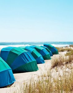 What to do in Palm Beach