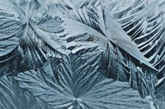 When thinking of snowflakes and frost, your memory tends to give you subtle hints: it's translucent, abstract, beautiful and short-lived. No...