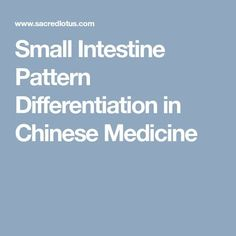 Small Intestine Pattern Differentiation in Chinese Medicine