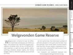 Welgevonden Game Reserve in Issue 40 Big 5, Natural Scenery, Game Reserve, Mammals, Exotic, Destinations, Africa, Ocean, Island