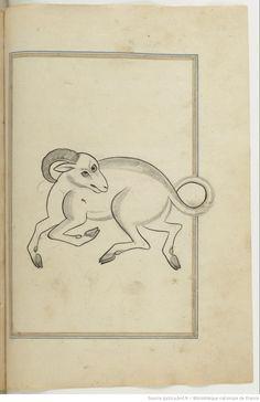 'Book of Fixed Stars' (Kitāb suwar al-kawākib al-ṯābita) by 'Abd al-Rahman ibn 'Umar al-Ṣūfī, dated 1643, The National Library of France , Arabe 6528