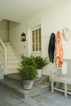 back entry | boxwoods