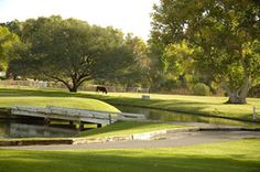 """The TUBAC Golf Resort & Spa...a magnificient retreat for those tired bones! Come and RELAX and enjoy """"the most perfect year round climate in the USA"""" www.arizonasunshinetours.com with www.tubacgolfresort.com"""