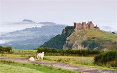 Carmarthenshire, Wales: Birthplace of one of my ancestors on my paternal side, Samuel Davies.