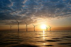 Wind Turbines Off the North Carolina Coast Could Supply State with 100% of Its Power