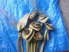 HARAKEKE - Flax weaving … Flax Weaving, Flax Flowers, Diy Mirror, Handmade Ornaments, Flower Arrangements, Create, Mirrors, Bouquets, Baskets