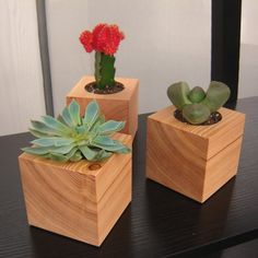 Wood cube planters