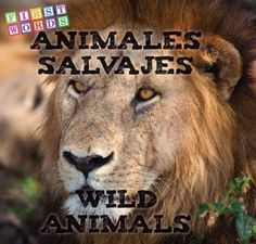 Animales Salvajes/ Wild Animals