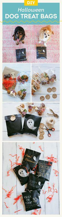 DIY Halloween Dog Treat Bags - Spoooooky! ;)