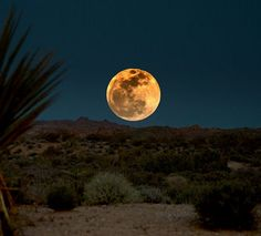 ✯ Moon over the New Mexico desert - Awesome Photo!