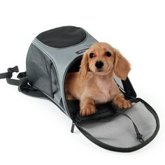TraveT Pet Travel Straps Dog Bag Breathable Pet Backpack Dog Portable Bag ** You can get more details by clicking on the image. (This is an affiliate link and I receive a commission for the sales) Cat Backpack Carrier, Pet Travel Carrier, Dog Carrier Bag, Mesh Backpack, Dog Backpack, Travel Backpack, Dog Travel, Designer Dog Carriers, Cat Cages