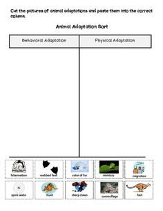 Behavioral vs. physical animal adaptations sort
