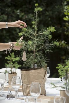 The Design Chaser: BNZ GoodHome | Christmas Table Setting