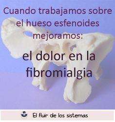 Cuando trabajamos el esfenoides mejoramos el dolor en la fibromialgia